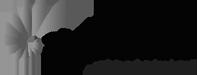 shellharbour-logo Home